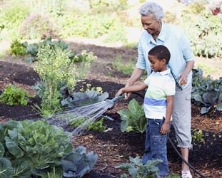 Braylon's grandmother shewed him how to care for a garden.