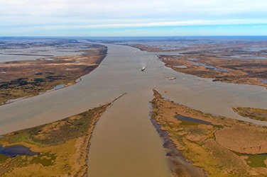 The Mississippi River Delta contains a large amount of silt.