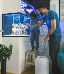 The tube allows for siphonage of the fish tank water into the container.