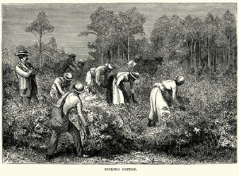 Slavery was a common practice in the 1800's on cotton plantations in the south.