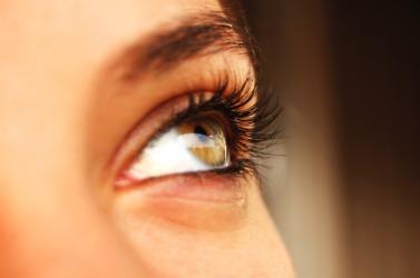 A woman's brow.