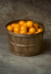 This bushelbasket contains a bushel of oranges.