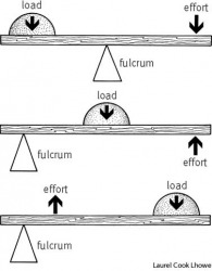 fulcrum top:  first-class lever, with fulcrum between load and effort, as in a crowbar;
