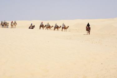 A camel caravan in the desert.
