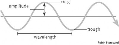 wave structure of a wave
