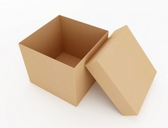 An empty cardboard carton.