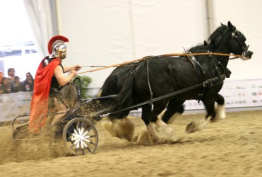 A Roman charioteer driving his chariot in a race.