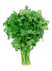 This bunch of cilantro, or coriander, is also known as Chinese parsley.