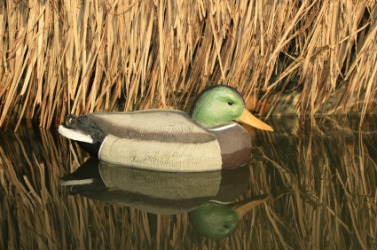 A duck decoy.