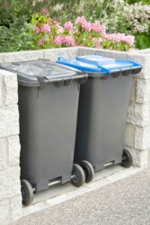 A pair of plastic dustbins.