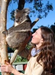 The Koala is arboreal.