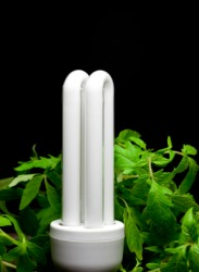 This compact fluorescent lightbulb is more economical than a regular lightbulb.