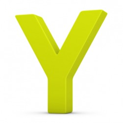 The letter Y.