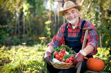 A farmer at work.