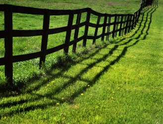 A wooden fence.
