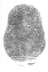 An image of a fngerprint.