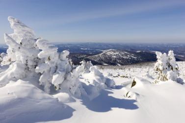 A frozen landscape.