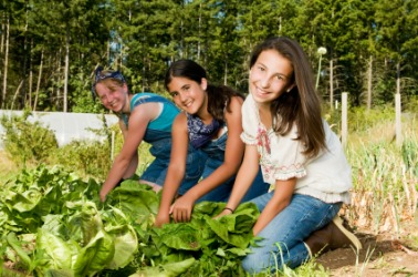Three girls working in their garden.