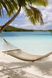 A hammock on the beach.
