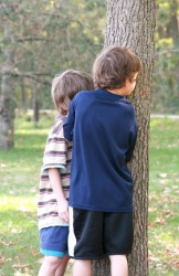 Two boys are trying to hide behind a tree.