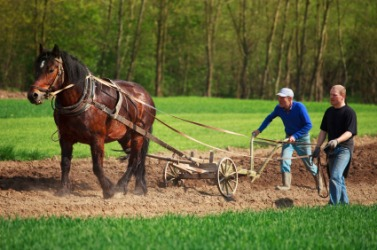 A plow is a farm implement.