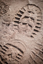 The imprint of a shoe in the mud.