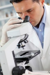 A research scientist investigates evidence under a microscope.