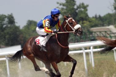 A jockey during a race.