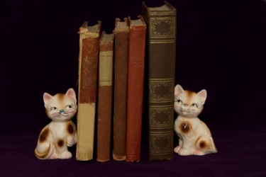 These cat bookends flank these books.