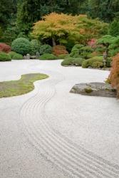 A tranquil Zen garden.