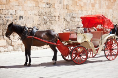 A horse hitched to a carriage.