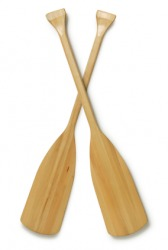 A pair of oars.