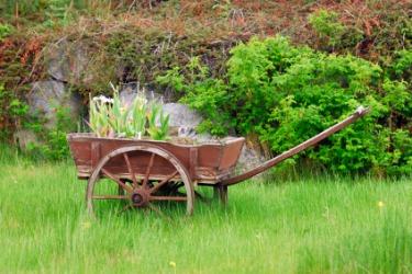 A barrow in a field.