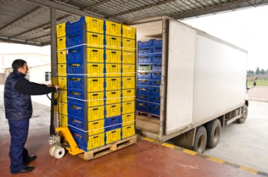Plastic crates have been palletized for easier handling.