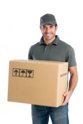 Parcel dictionary definition   parcel defined
