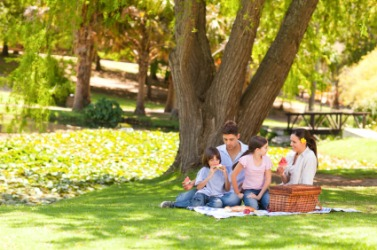 A family enjoying a picnic in the park.