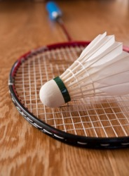 A badmintion shuttlecock and racket.