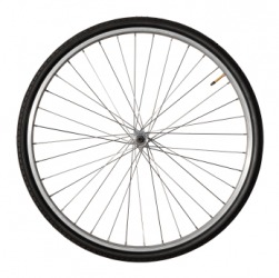 The radius of this wheel is indicated by the spokes.