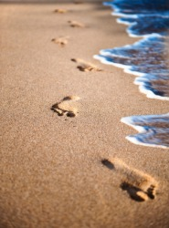 Footprints in the sand on a beach.