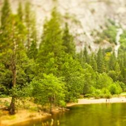 A vale in Yosemite.