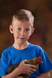 A boy holds a banty hen.