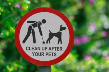 This sign says you need to clean your doggies ca-ca.