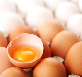 Eggs are delicate.