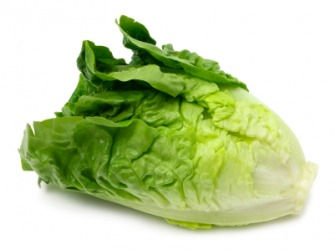 A head of Romaine lettuce.