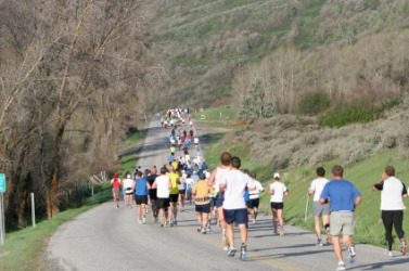 A group of people running a marathon.