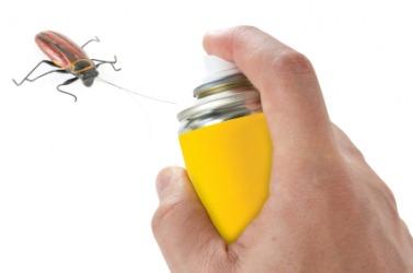 A person killing a bug.