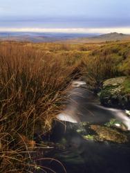 A quag in Dartmoor.