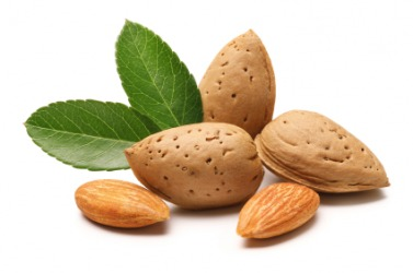 An almond is one type of seed.