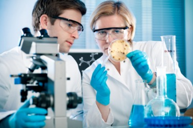 Two scientist working in their laboratory.