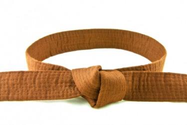 brown belt dictionary definition brown belt defined